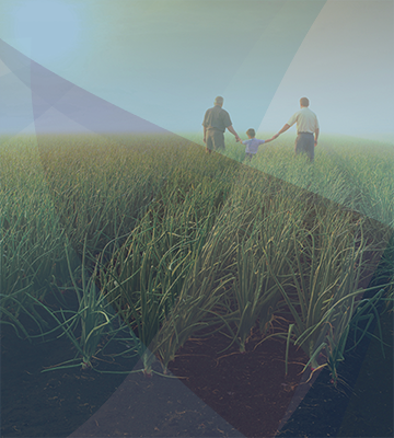 Two Men and Child Playing in Grass Field